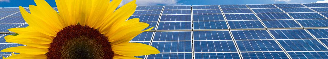 solar_zellen_3